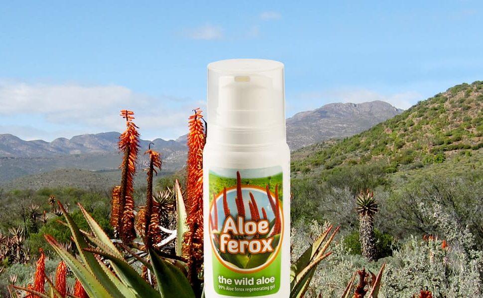 Gel d'Aloe ferox
